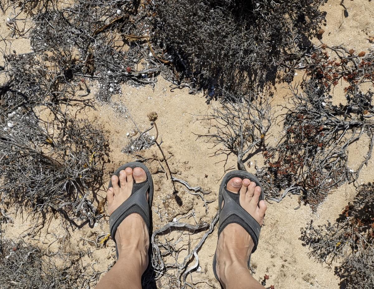 Algarve Highlights Wanderflipflops