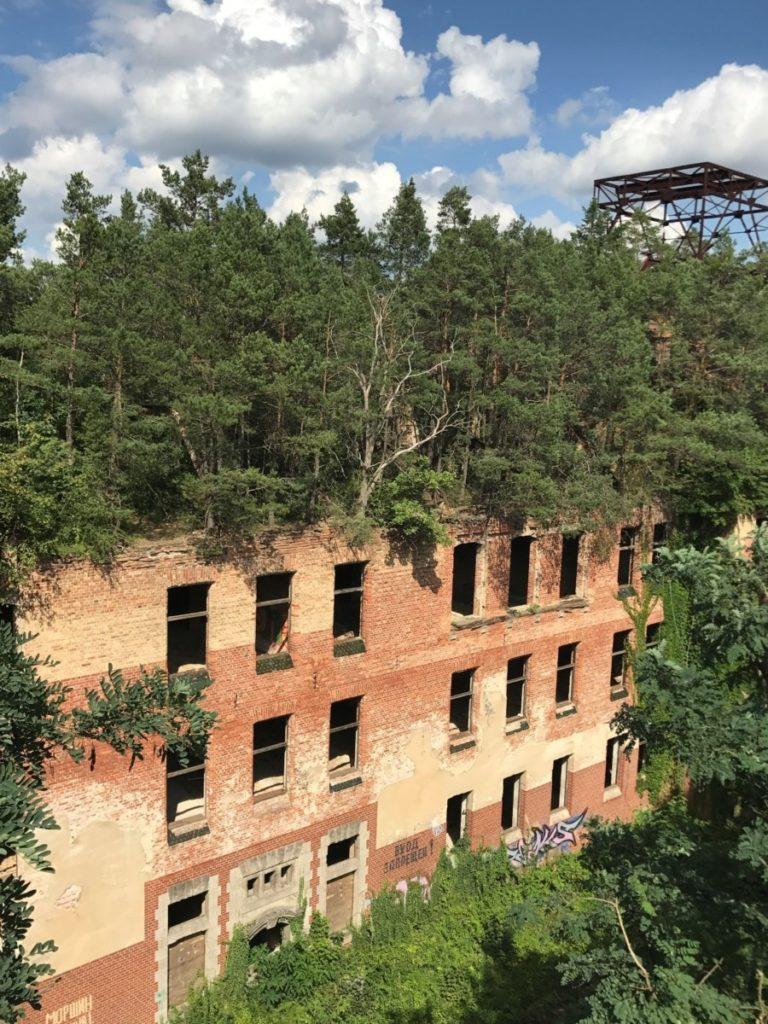 Berlin entdecken Baumwipfelpfad Beelitz