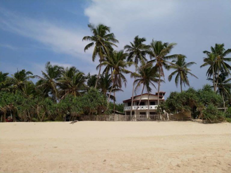 Fernfreude Strand Palmen