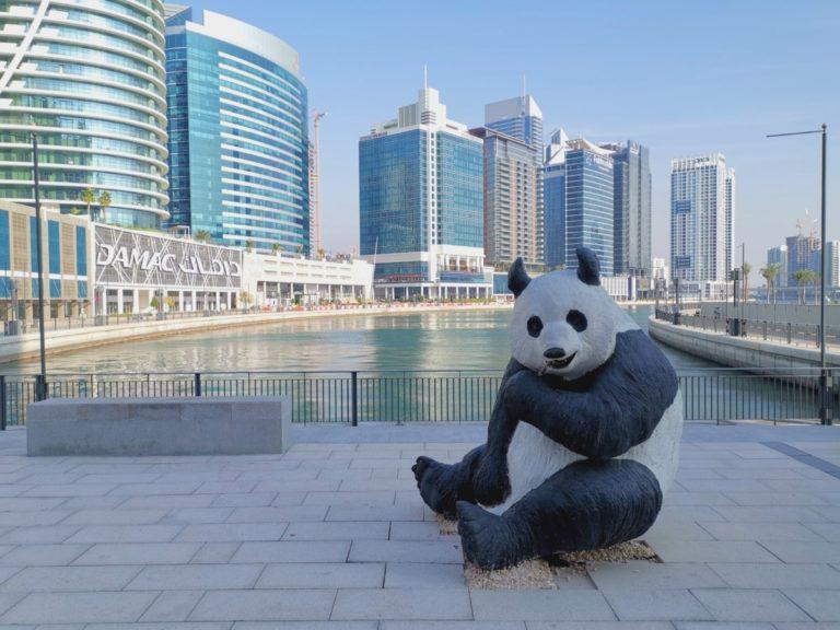 In Dubai essen und trinken:  Geht das auch günstig?
