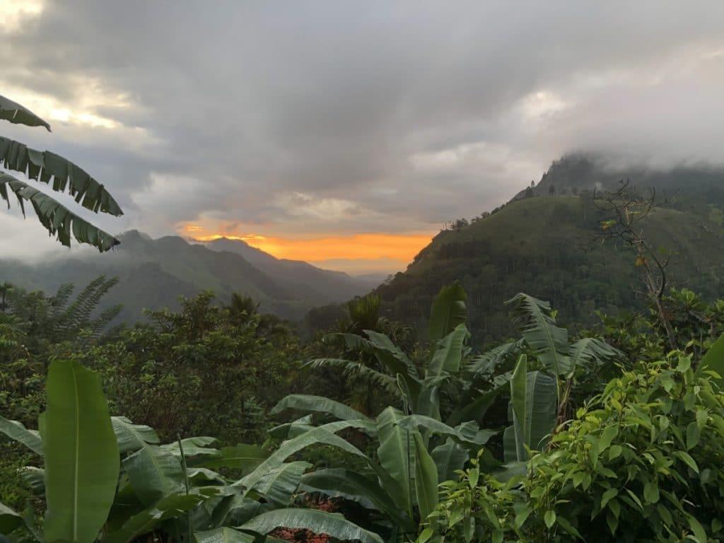Backpacking Sri Lanka - Berge in Ella