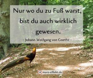 Reisezitat Goethe zu Fuß