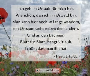 Sprüche Urlaub Heinz Erhardt Urwald