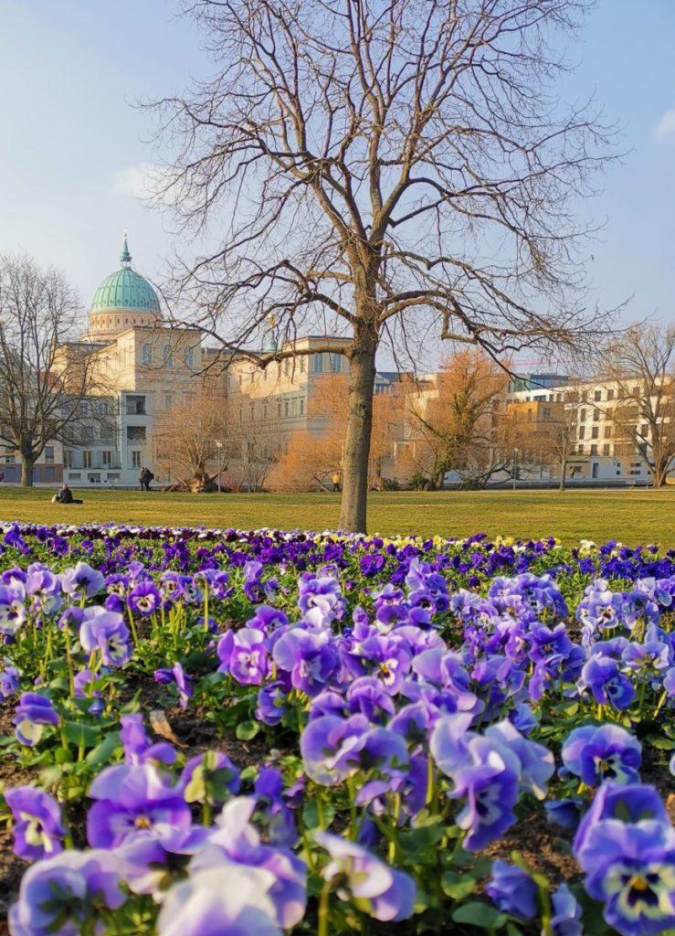 Potsdam entdecken - Aussicht Freundschaftsinsel