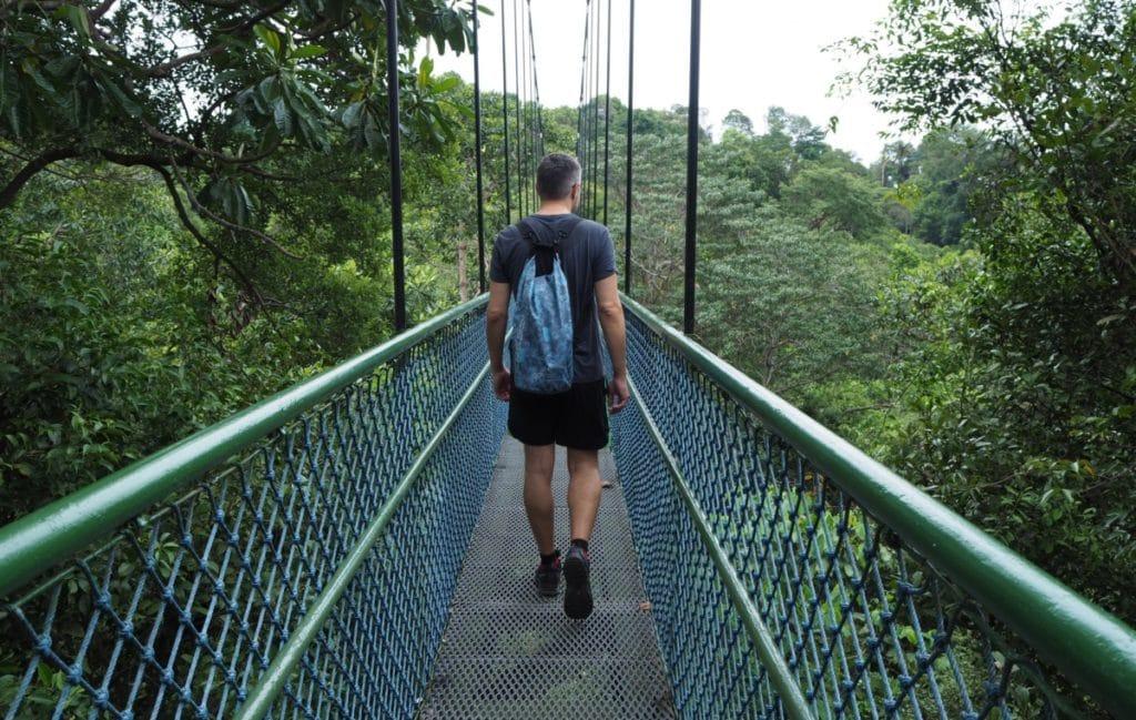 Stopover Singapur Hängebrücke im Urwald